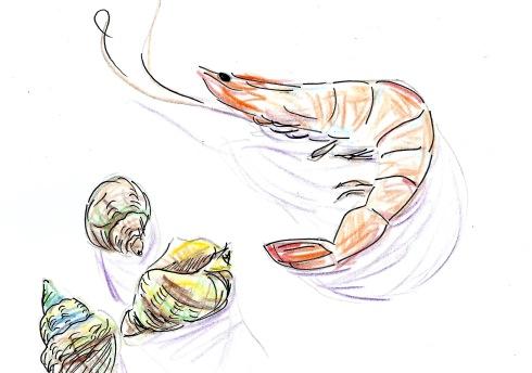 prawns and whelks